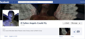 If Fallen Angels Could Fly FB page